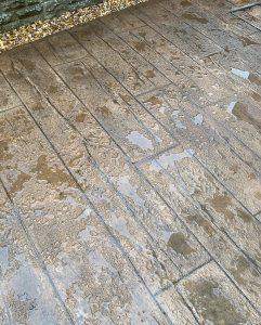 driveways mold